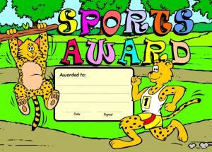 Standard Merit Award - Sports Leopards-0