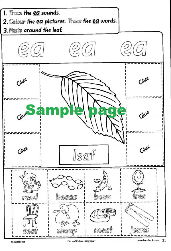 Cut and Colour-Digraphs